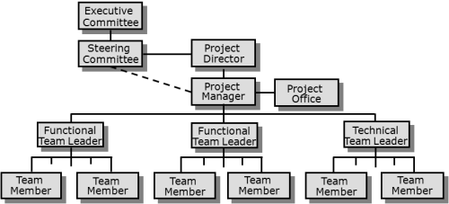 Process or functionally structured team - available as a PowerPoint slide